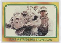 Luke Astride His Tauntaun
