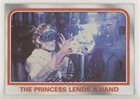 The Princess lends a hand [NoneGoodtoVG‑EX]