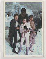 Chewbacca, Han Solo, Luke Skywalker, Leia Organa [GoodtoVG‑EX]