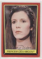 Princess Leia Organa [PoortoFair]