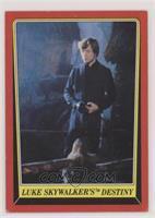 Luke Skywalker's Destiny