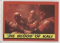 The Blood Of Kali [EXtoNM]