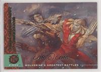 Wolverine vs. Lady Deathstrike [EXtoNM]