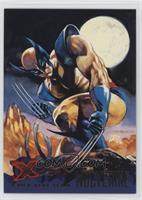 X-Men Blue Team - Wolverine