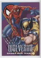 Wolverine Spider-Man Team-Up