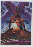 Wolverine, Magneto
