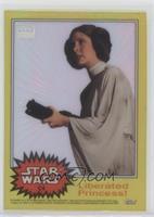 Liberated Princess! (Princess Leia)