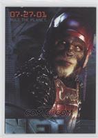 Chimpanzee Warrior