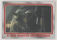 A Jedi Master on Dagobah