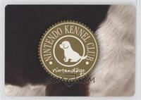 Nintendo Kennel Club
