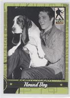 50's - Hound Dog