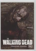 Walker (Non-Sport Update)