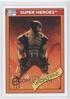 Wolverine (Jim Cheung)