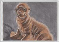 Mark Dos Santos (Sea Lion) /1