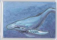 Neil Camera (Blue Whale) /1