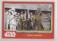 Rebels captured
