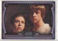 Princess Leia, Luke Skywalker