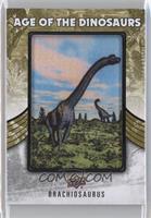 Extinct (Herbivore) - Brachiosaurus