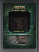 Megaloceros Jaw