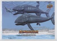 Sea Creatures SP - Leedsichthys