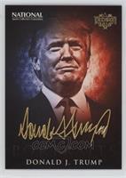Portraits - Donald J. Trump