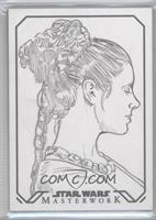Dan Cooney (Princess Leia Organa) /1