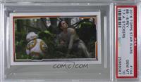 BB-8, Rey [PSA10GEMMT]