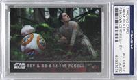 Rey & BB-8 in the Forest [PSA/DNA Certified Encased]
