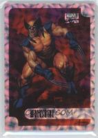 Wolverine /25