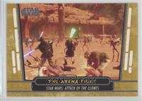 The Arena Fight /40