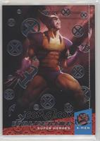 Heroes - Wolverine
