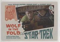 Wolf in the Fold