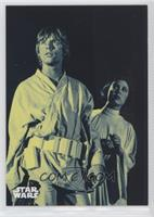 Luke Skywalker's Bold Plan