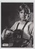 Red Five: Luke Skywalker