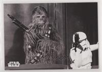 The Wookie is Loose!