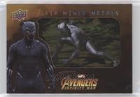 SP - Black Panther