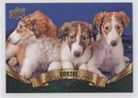 Puppy Variant - Borzoi