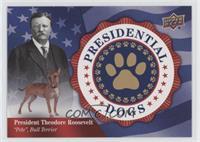 Tier 5 SP - Theodore Roosevelt, Pete