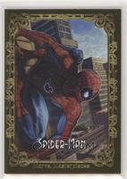 Canvas Gallery Variant - Spider-Man #/99