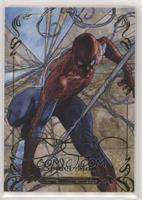 Level 4 - Spider-Man