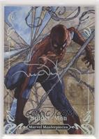 Spider-Man #/10
