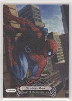 Canvas Gallery - Spider-Man