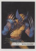 Flairium Tier 1 - Wolverine