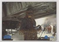 Peter Mayhew as Chewbacca #/25