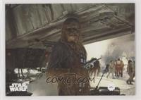 Series Two - Peter Mayhew as Chewbacca #/99