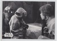 Seeking Yoda