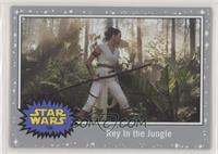 Rey in the Jungle