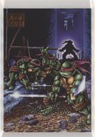 Teenage Mutant Ninja Turtles Volume 1 , Book 1 (Kevin Eastman) #/25