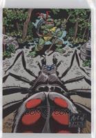 Jim Lawson , Donatello vs. the spider