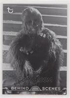Wookie Downtime